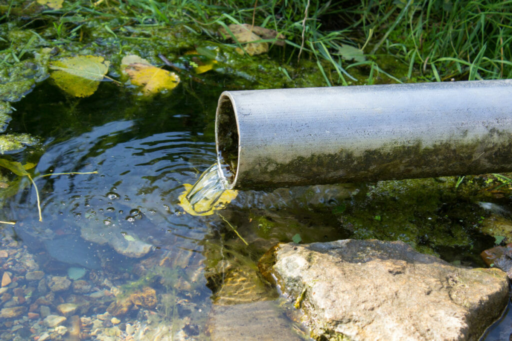 Water draining from a pipe into a creek