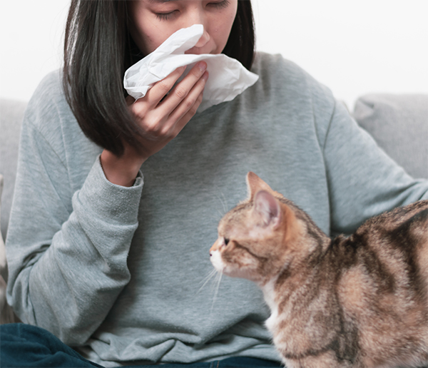 Orange County homeowner with poor indoor air quality